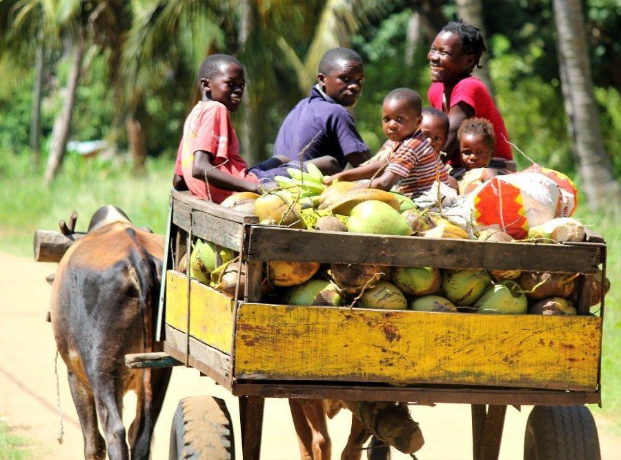 Reise in Mosambik, Familie auf dem Weg zum Markt, Sofala-Provinz