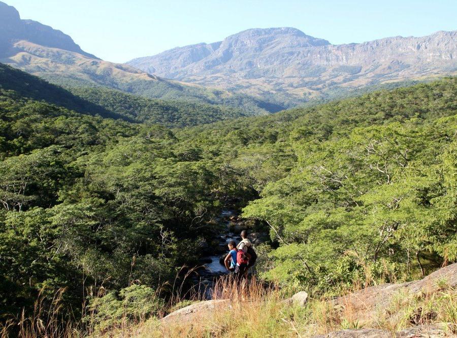 Reise in Mosambik, Blick auf den Monte Binga, den höchsten Berg Mosambiks, Chimanimani-Nationalreservat