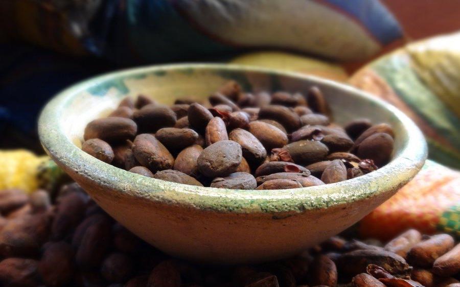 Reise in Ecuador, Kakaobohnen in Schokoladenfabrik