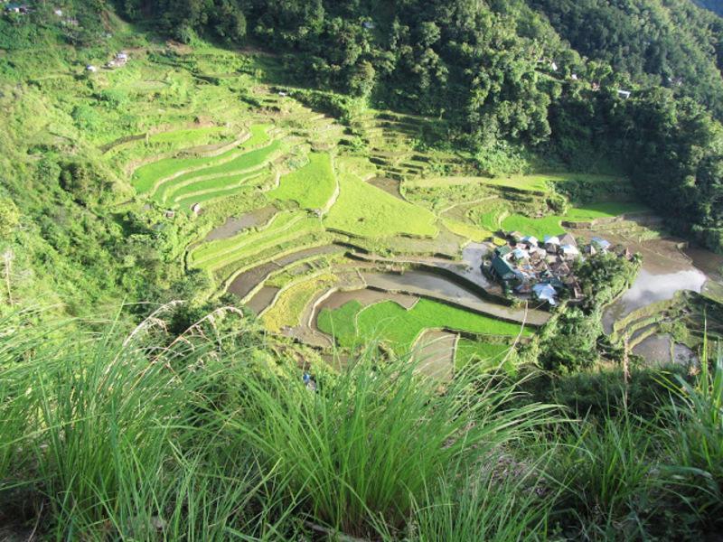 Reise in Philippinen, Reisterrassen auf den Philippinen