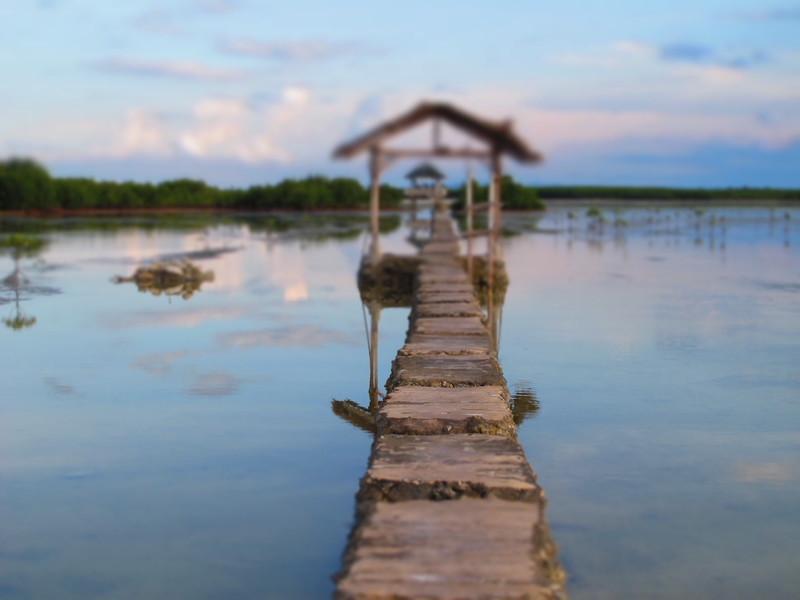 Reise in Philippinen, Philippinen: Inselhüpfen auf den Visayas