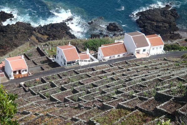 Reise in Portugal, São Miguel – Kraterseen, heiße Quellen und Vulkane