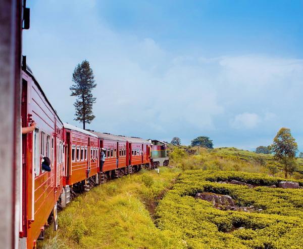 Reise in Sri Lanka, Per Zug durch Sri Lanka
