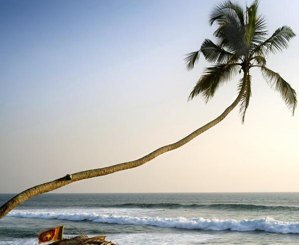 Reise in Sri Lanka, Tropisches Sri Lanka