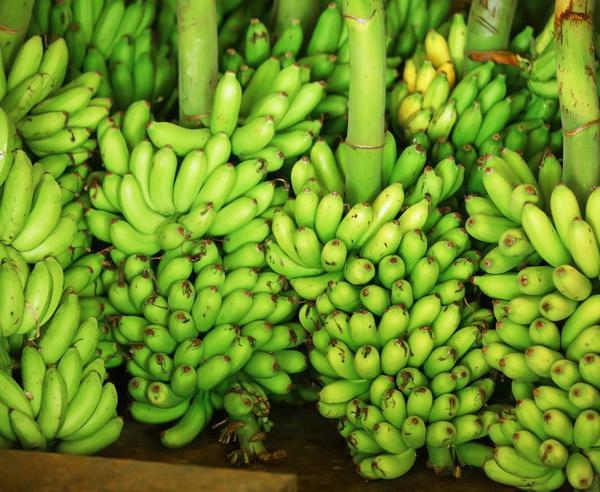 Reise in Sri Lanka, Bananen auf dem Markt in Sri Lanka