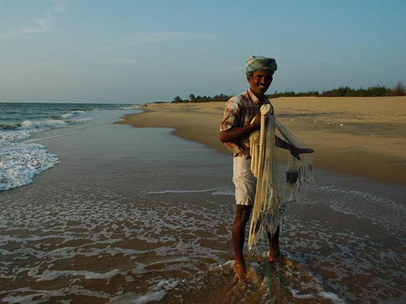 Reise in Sri Lanka, Sri Lanka: Höhepunkte mit Pfiff