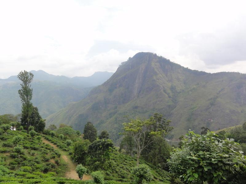 Reise in Sri Lanka, Sri Lanka: Im Einklang mit der Natur