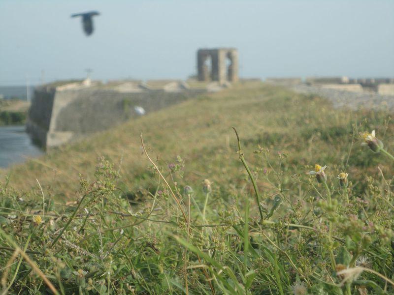 Reise in Sri Lanka, Holländisches Fort (Dutch Fort) in Jaffna