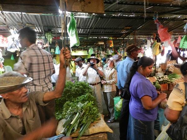 Reise in Sri Lanka, Sri Lanka for family