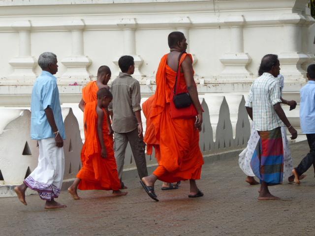 Reise in Sri Lanka, Sri Lanka Summer for family