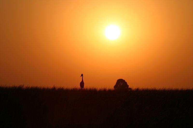 Reise in Südafrika, Sonnenaufgang Limpopo @South African Tourism