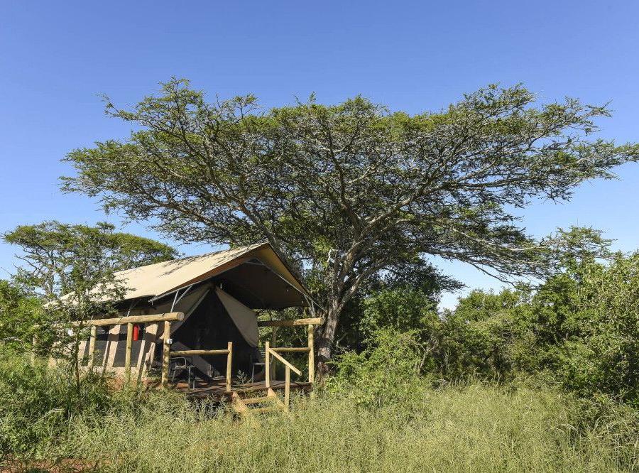 Reise in Südafrika, Hauszelt von der Zululand Lodge