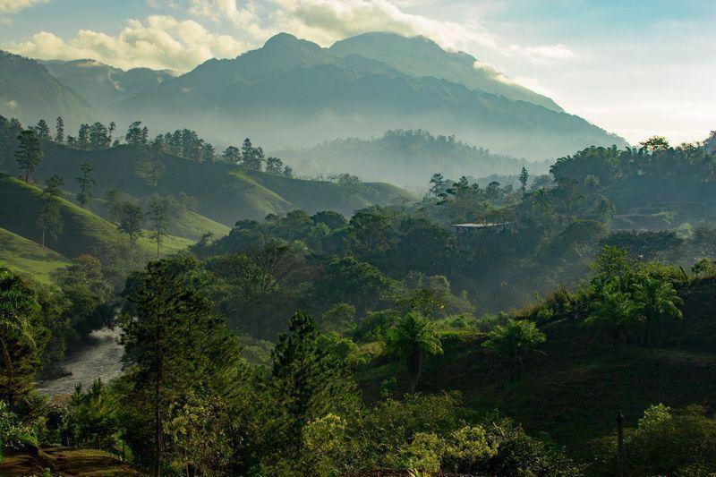 Reise in Suriname,  Mit einem Propeller-Flug geht es mitten hinein in den Regenwald Surinames