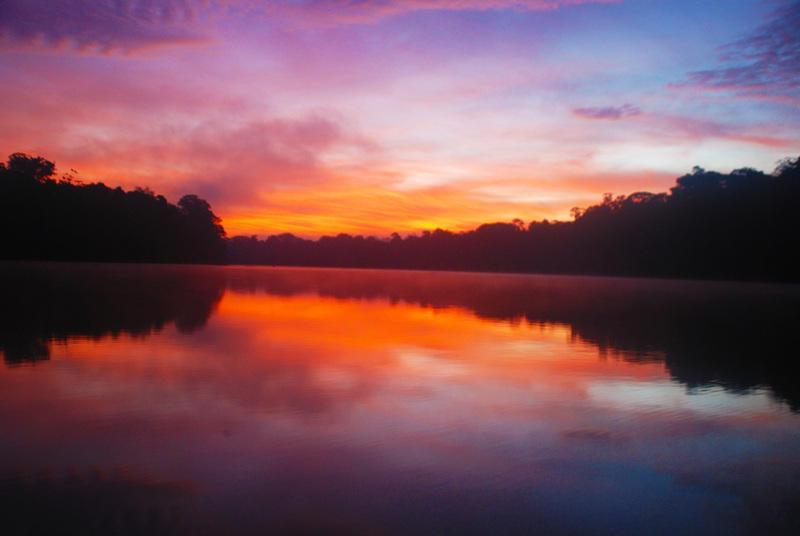 Reise in Suriname, Suriname - Faszination Regenwald
