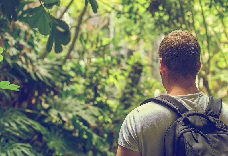 Reise in Suriname, Wanderung in die Wanawiro-Berge