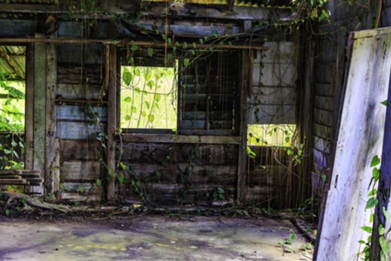 Reise in Suriname, Suriname Farm
