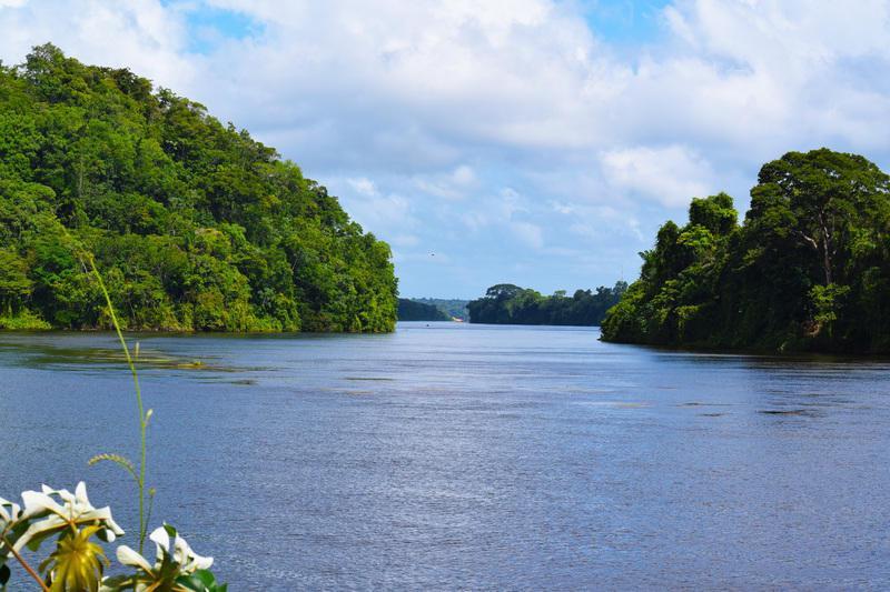 Reise in Suriname, In der Natur Surinames unterwegs mit Langbooten