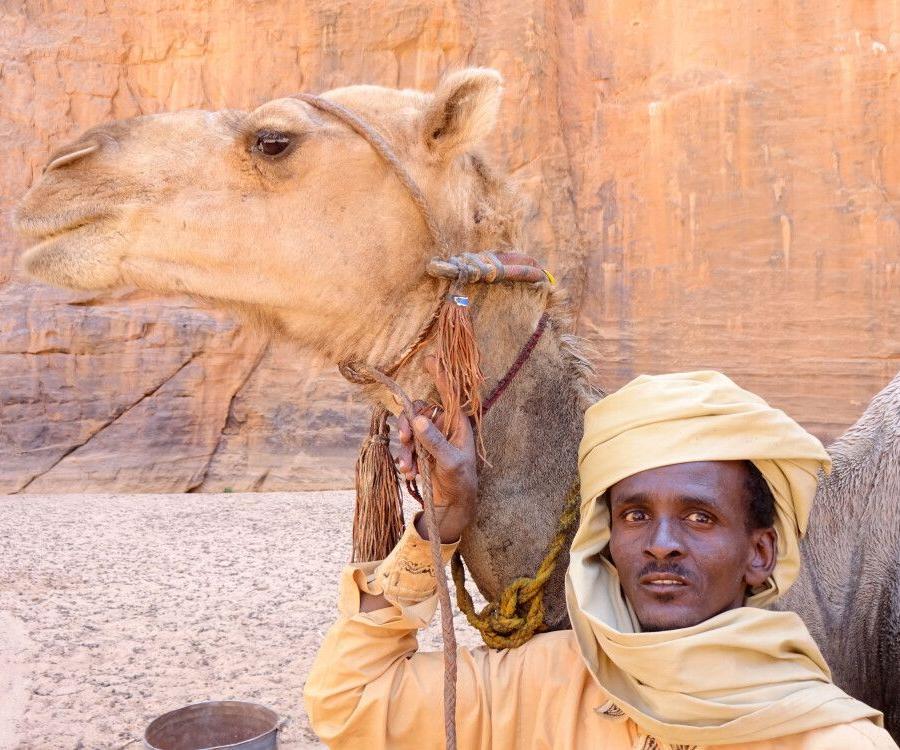 Reise in Tschad, Nomade mit Kamel