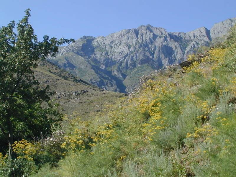 Reise in Usbekistan, Berge