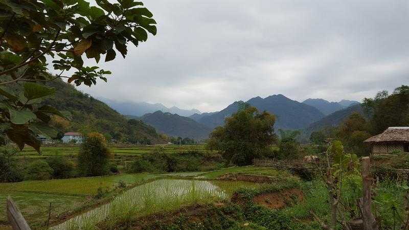 Reise in Vietnam, Radtour durch die vietnamesische Landschaft