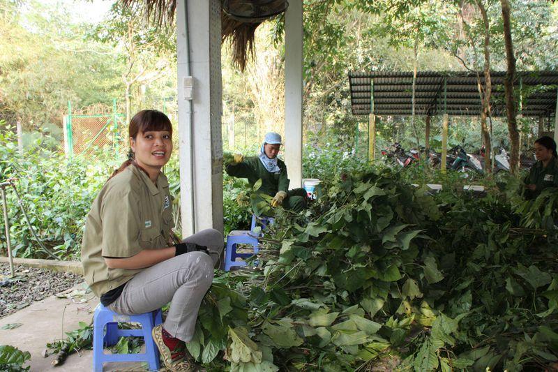 Reise in Vietnam, EPRC Projekt in Vietnam zum Schutz von Primaten