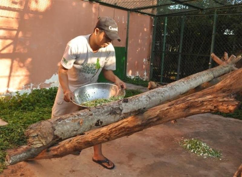 Reise in Vietnam, Besuch des Wildlife at Risk-Projektes mit seiner Rettungsstation für bedrohte Tierarten in Ch Chi, Vietnam