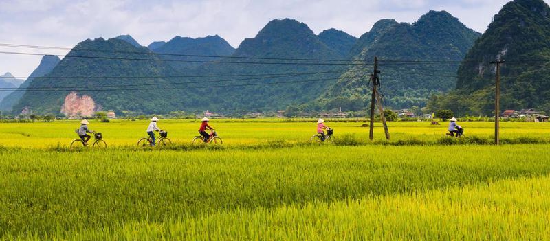 Reise in Vietnam, Rundreise per Fahrrad in der Natur zum Nationalpark Cuc Phuong in Vietnam