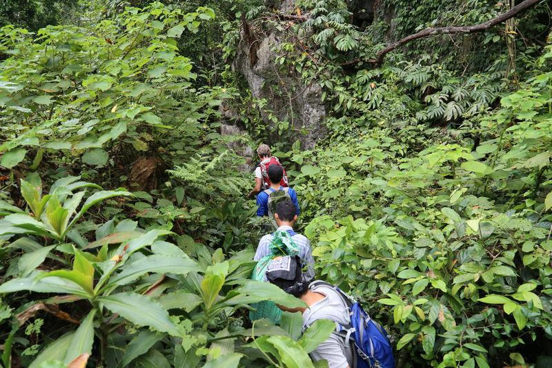 Reise in Vietnam, Vietnam-Unsere Reisegruppe erkundte die einzigartige Paradies-Höhe im Phong Nha Nationalpark und die hiesiege Biodiversi