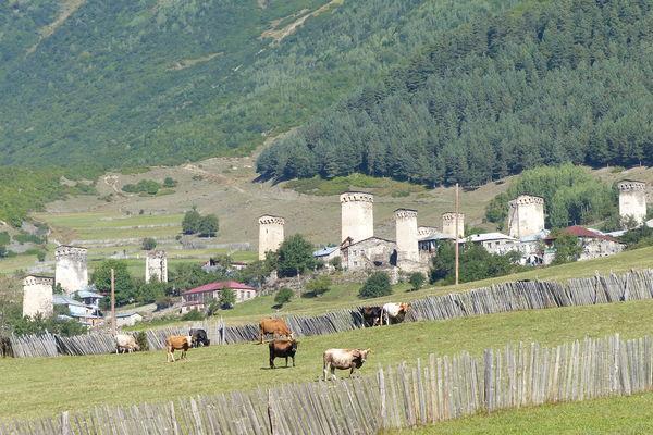 Reise in Georgien, Wandern im Großen Kaukasus