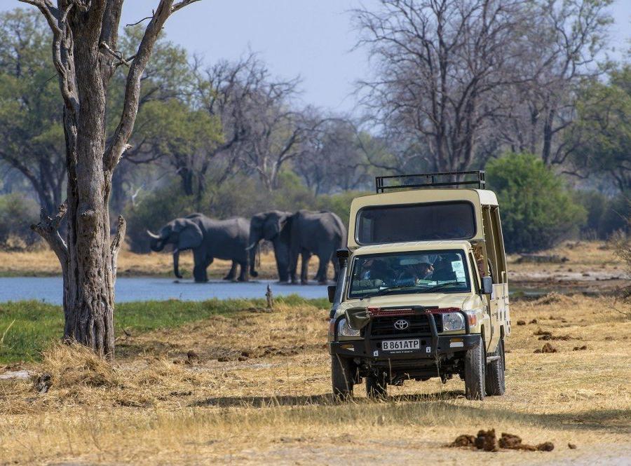 Reise in Botswana, Game Drive im Safarifahrzeug, Moremi Game Reserve