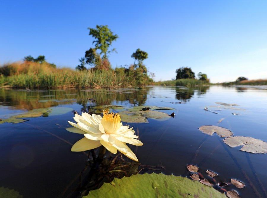 Reise in Botswana, Reisetraum Botswana - statt träumen selbst erleben ...