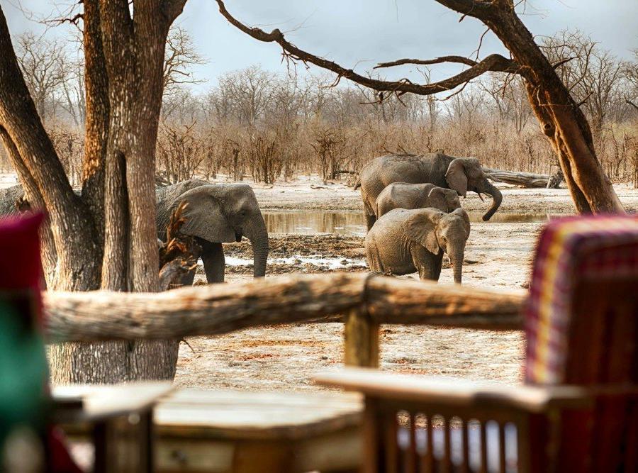 Reise in Botswana, Elefanten gesehen vom Hauptdeck im Hyena Pan Tented Camp
