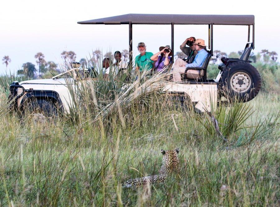 Reise in Botswana, Safari im Okavango-Delta