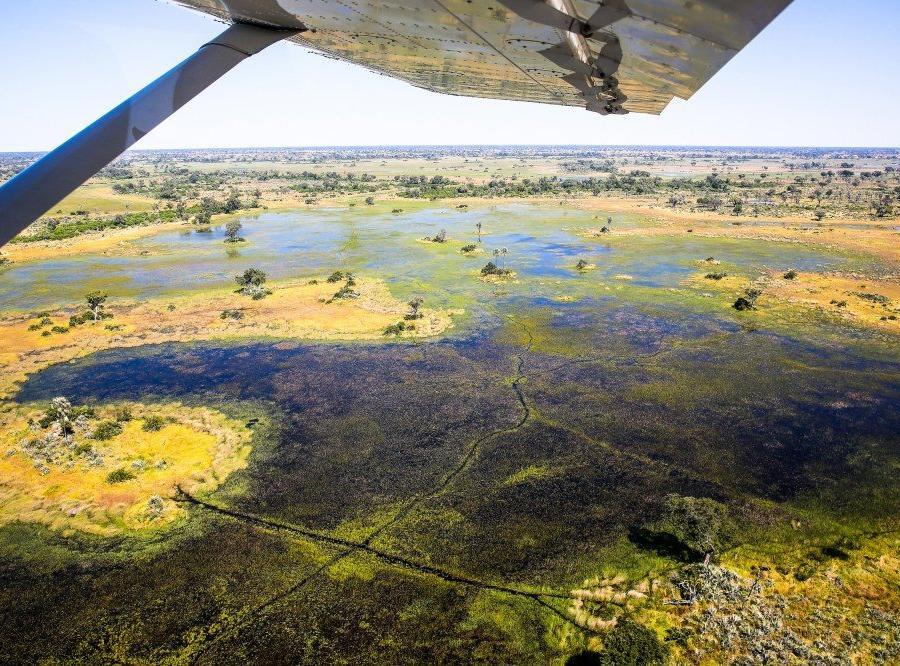 Reise in Botswana, Luftaufnahme vom Okavango-Delta