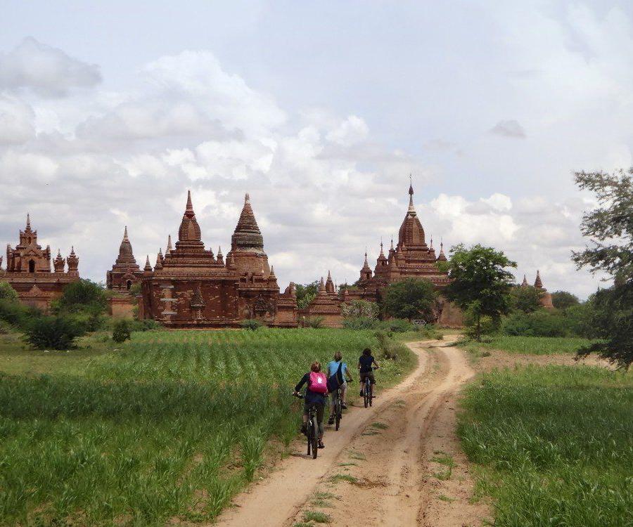 Reise in Myanmar, Elefanten mit ihren Mahouts in Myanmar